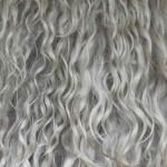 Angora goat hair